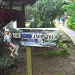 Things to do in Jamaica with Kids