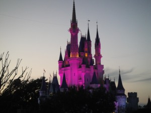 Disney World For All – The Family Travels To Magic Kingdom