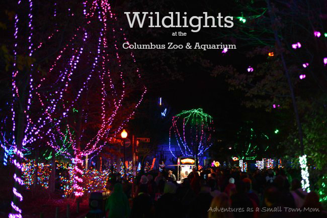 Wildlights at Columbus Zoo