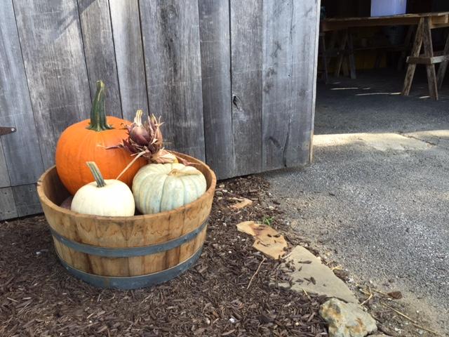 Fall getaways_Pumpkins