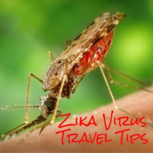 "Tips For Travelers Wondering ""Where Is Zika Virus?"""