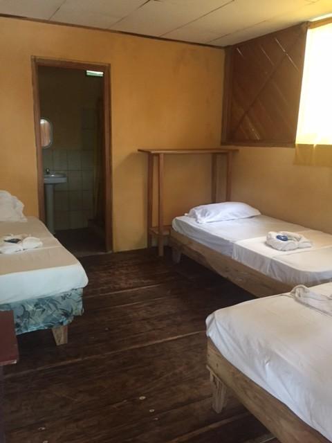 Los Gatuzos Room