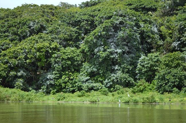 Nicaragua archipelagos island