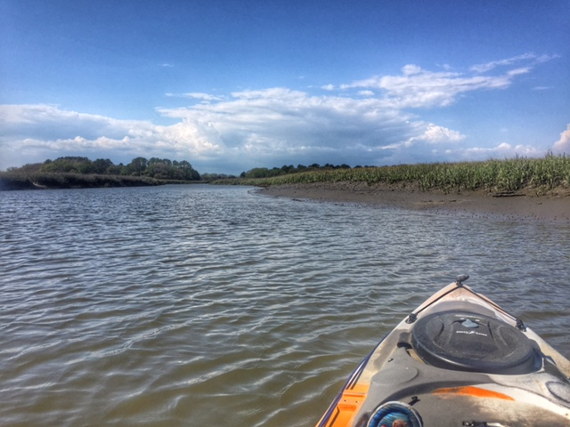 Kayaking in Charleston SC