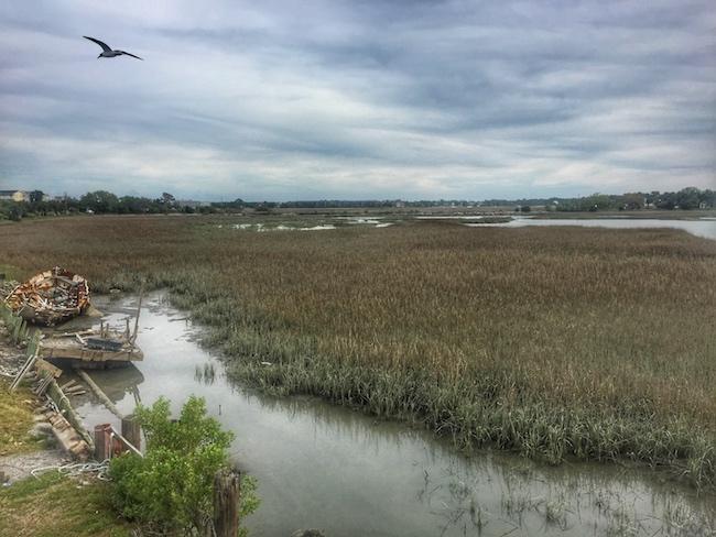 Kayak Fishing In Charleston Marsh